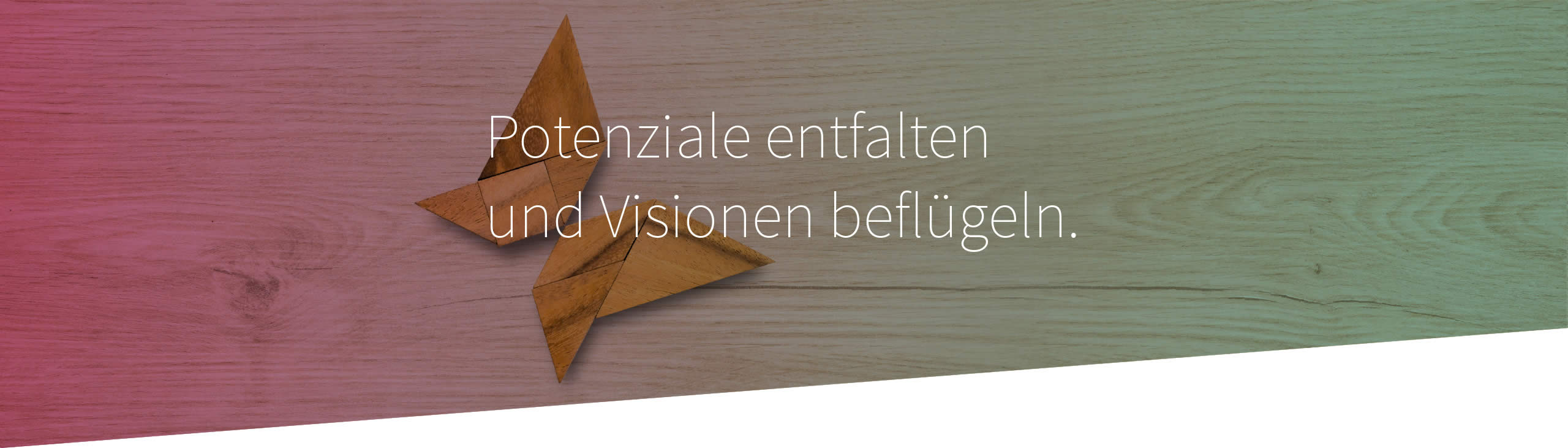 Header Leistungen Coaching